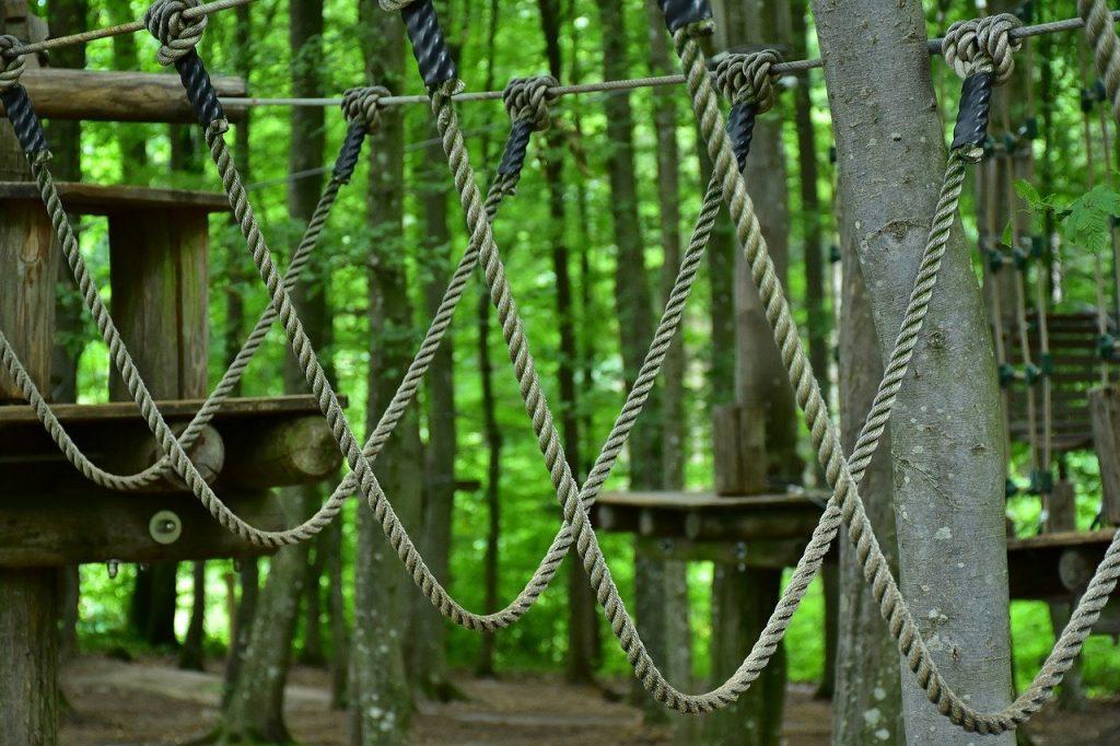 Parcours d'accrobranche, activité dans les arbre pour adultes et enfants