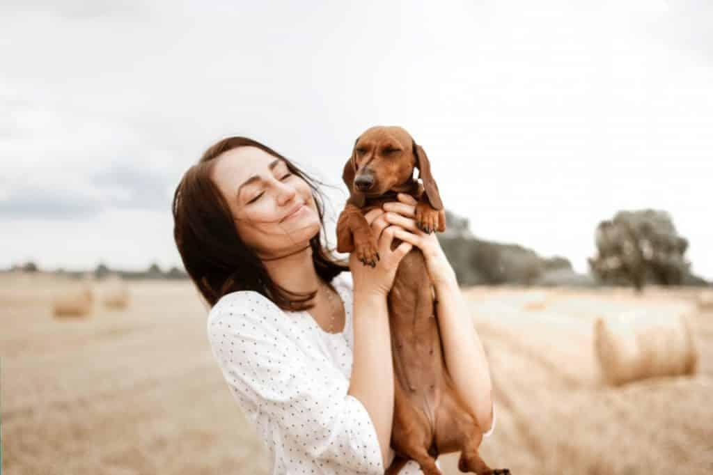 Petit chien saucisse dans les bras de sa maitresse