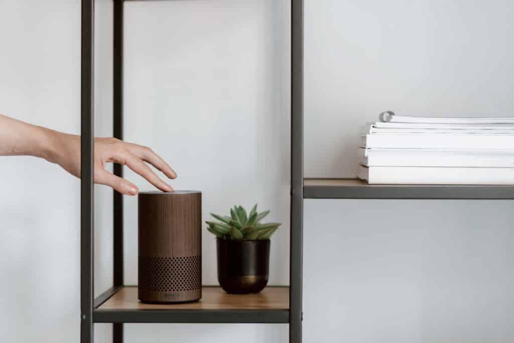Amazon Alexa, marron disposé sur une étagère à côté d'un petit pot avec un cactus